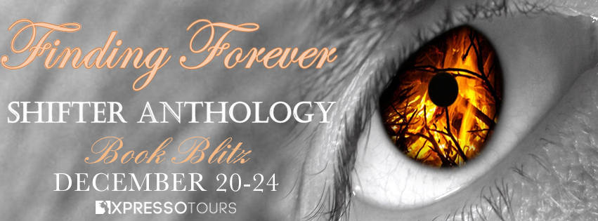 Finding Forever – Blitz and Giveaway