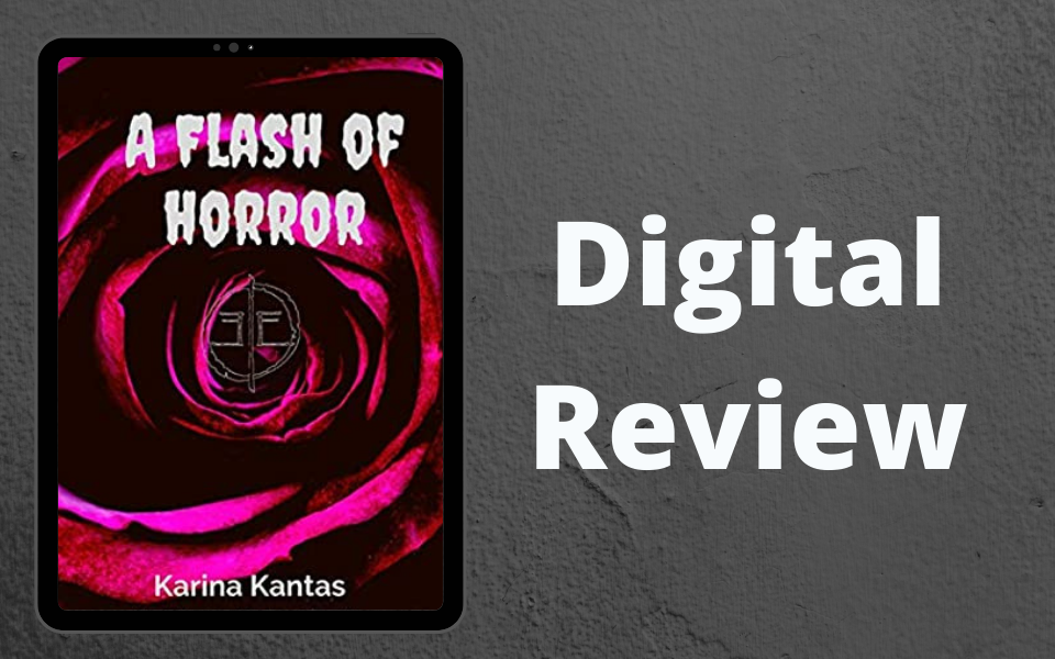 Review Flash of Horror